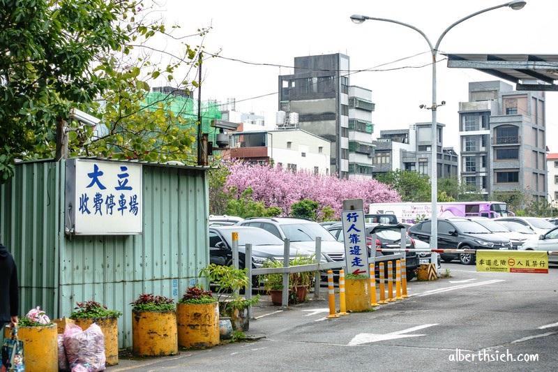 桃園賞櫻.聖保祿醫院旁