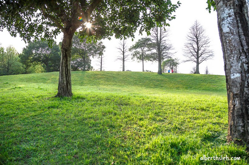 大溪埔頂公園.桃園親子景點