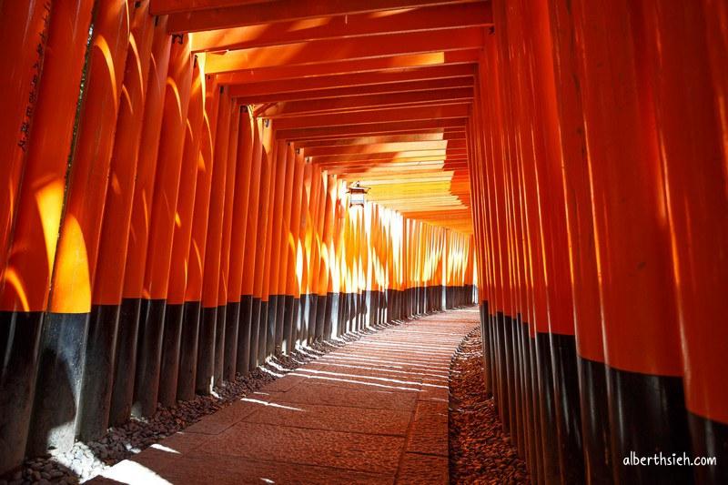伏見稲荷大社.京都景點