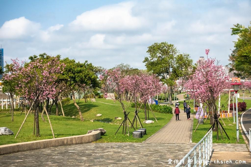 桃園櫻花景點.檜稽河濱公園
