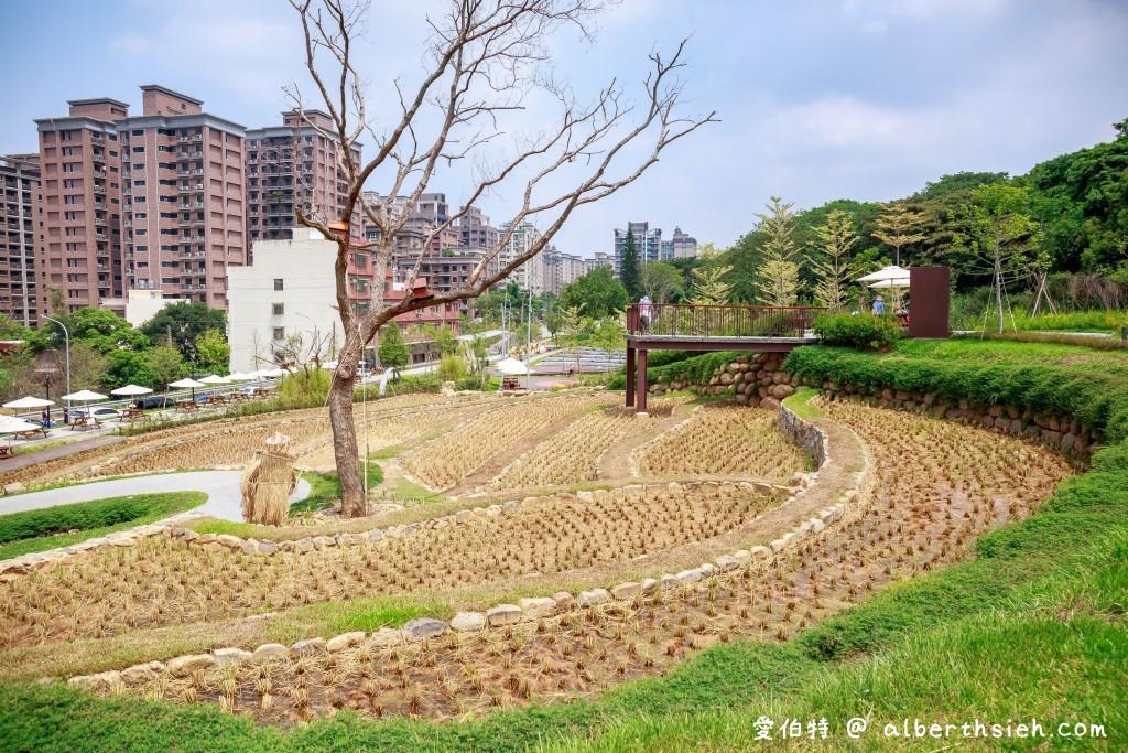 桃園親子景點.大有梯田生態公園(水梯田改造為全齡式森林遊戲場,還有極限挑戰王親子版)
