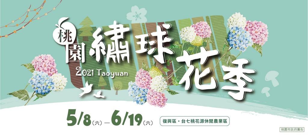 桃園繡球花季