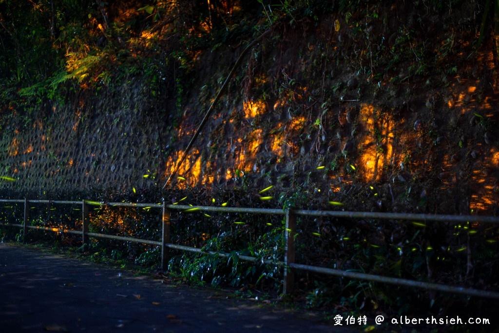 舊百吉隧道.桃園大溪景點(乾淨明亮有風很涼爽舒適,內有日據時代的輕便軌道台車)