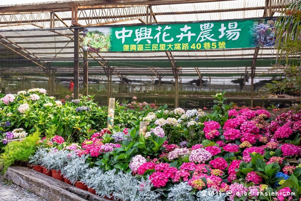 中興花卉農場.桃園花卉農場