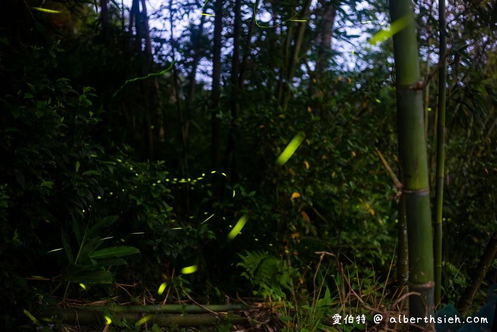 網站近期文章:桃園螢火蟲.百吉國小(水泥步道超方便行走的賞螢好去處)