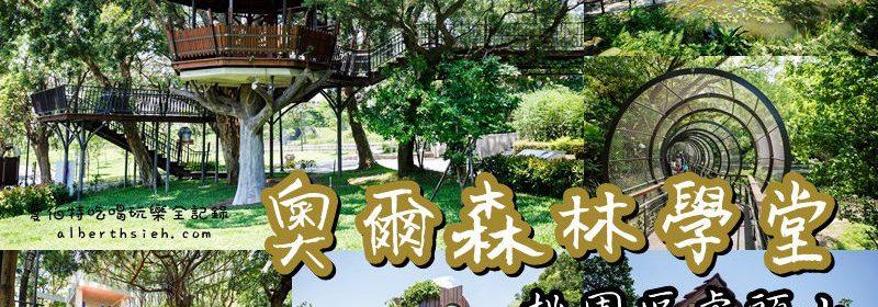 桃園親子景點.虎頭山奧爾森林學堂