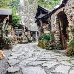 網站近期文章:阿將的家23咖啡館(阿里山中讓你流連放鬆的祕境)
