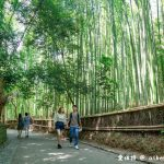 網站近期文章:京都嵐山景點.嵯峨野竹林小徑(聆聽翠竹的嘎嘎沙沙聲響的美妙旋律)