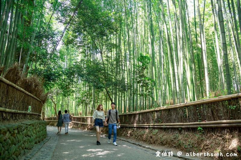 京都嵐山景點。嵯峨野竹林小徑