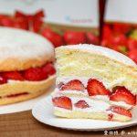網站近期文章:桃園伴手禮.佳樂蛋糕(在地人推薦第一名甜點美食,芋頭、草莓波士頓派也好吃)