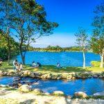 網站近期文章:龍潭三坑自然生態公園(桃園夏日親子戲水野餐熱門景點青山綠水好風光)