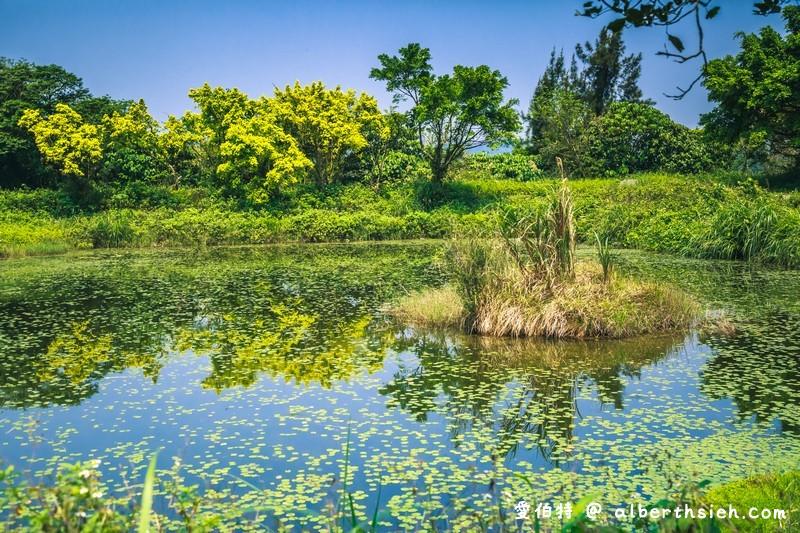 大漢溪山豬湖親水園區