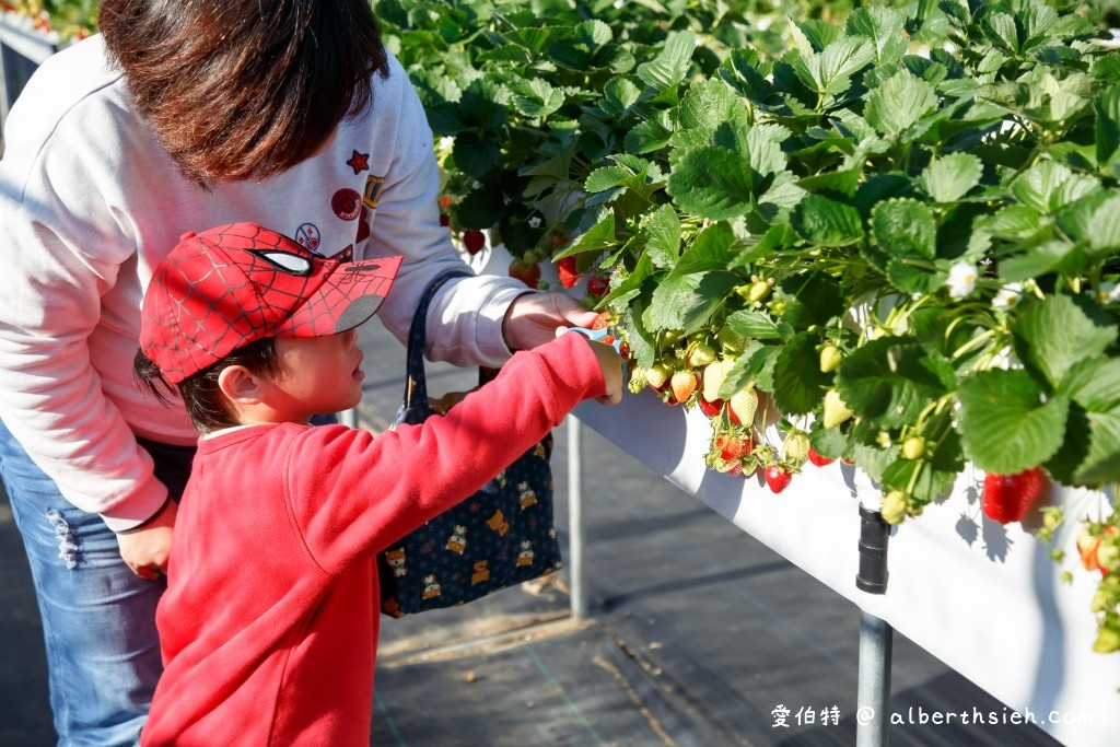 大湖草莓酒莊&草莓文化館(各種草莓小吃伴手禮,讓你感受被草莓包圍的甜蜜滋味) @愛伯特吃喝玩樂全記錄