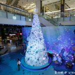 網站近期文章:2019桃園聖誕節(台茂海洋耶誕派對,8米高珊瑚聖誕樹,整點還有燈光秀以及海洋泡泡)