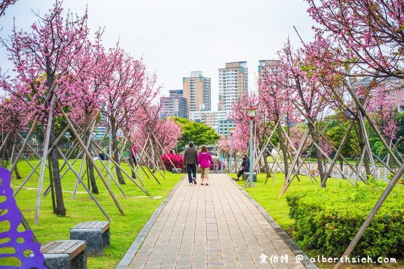 檜稽河濱公園.桃園賞櫻景點