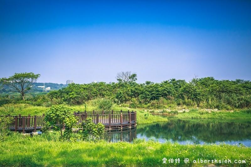 大溪月眉人工濕地生態公園